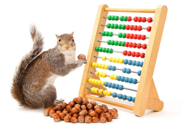 smarter squirrel smartersquirrel abacus save invest investing saving dividends dividend enjoy